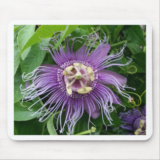 Passion Flower Purple and Green Mousepad