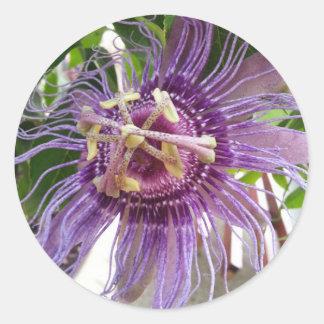 Passion Flower purple and green Round Sticker