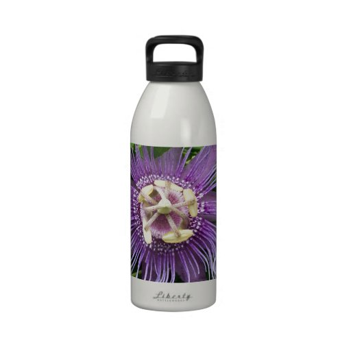 Passion Flower Purple and Green Drinking Bottle