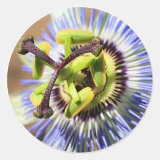 Passion Flower Sticker