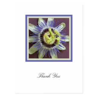 Passion Flower Sympathy Thank You Postcard