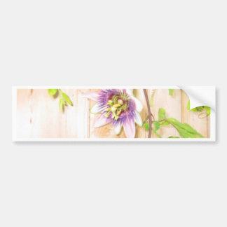 Passion Flower Vine Bumper Sticker