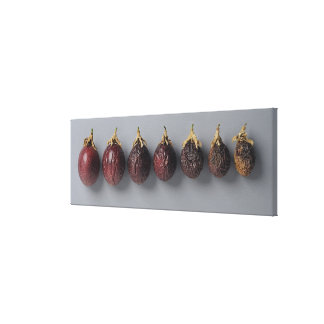 Passion fruit aging canvas print