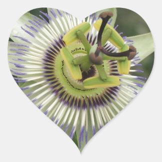 Passion Fruit Flower Heart Sticker
