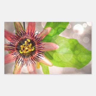 Passion Fruit Flower Rectangular Sticker