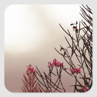 Passionate Fireweed Wild Flowers Square Sticker