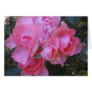 Passionate Kisses rose Greeting Card