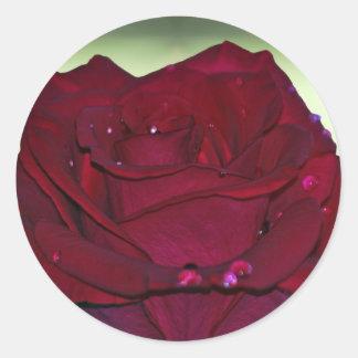 Passionate Red Rose Round Sticker