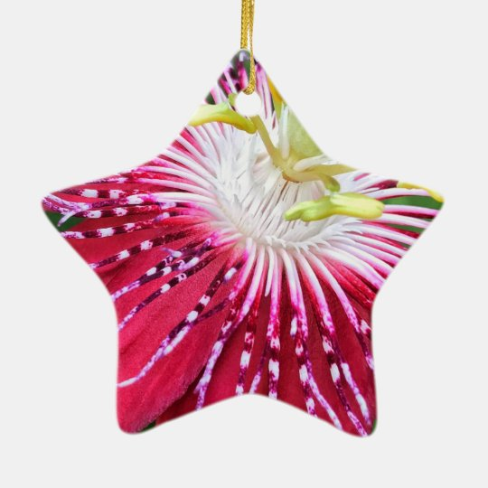 Passionflower Dble-Sided Star Ornament