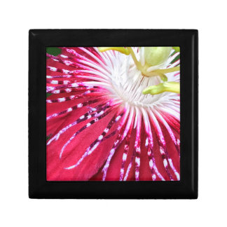 Passionflower Jewellery/Gift Box
