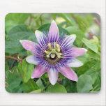 Passionvine Flower Mouse Pad