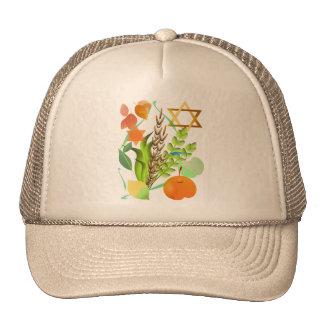 Passover Seder_2 Hat