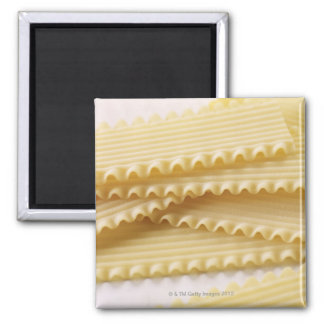 pasta square magnet