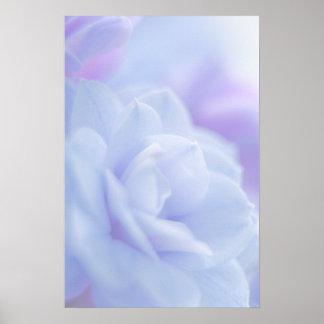 Pastel blue flower ... poster