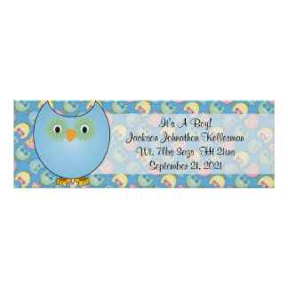Pastel Blue Owl Baby Shower Theme Poster