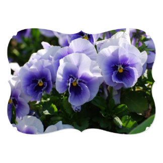 Pastel Blue Pansies 13 Cm X 18 Cm Invitation Card