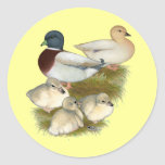 Pastel Call Duck Family Round Stickers