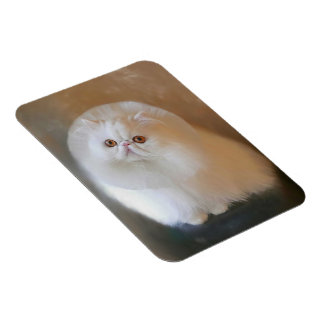 Pastel Drawing-Chip-Persian Cat-Photo Magnet