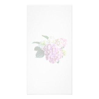 Pastel Hydrangea Photo Greeting Card