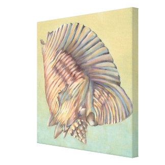 Pastel Large Conch Shell Canvas Print