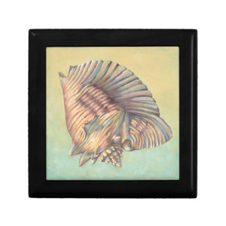 Pastel Large Conch Shell Small Square Gift Box