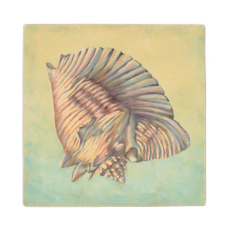 Pastel Large Conch Shell Wood Coaster