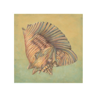 Pastel Large Conch Shell Wood Print