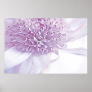 Pastel Lavender Flower Poster