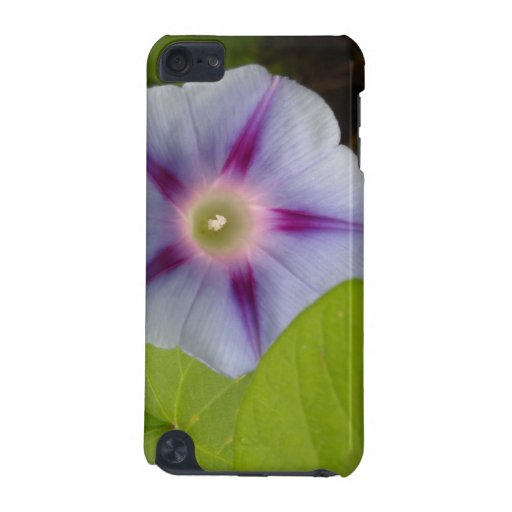Pastel Morning Glory iPod Touch (5th Generation) Cases