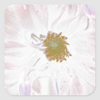 Pastel pale pink and white dahlia square stickers