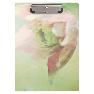 Pastel Paths XII Clipboard