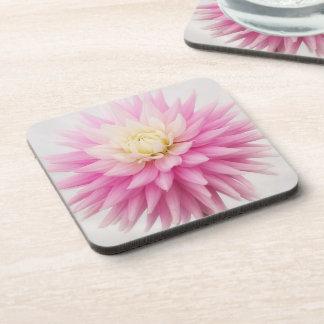 Pastel Pink Beautiful Blooming Dahlia Coaster Set