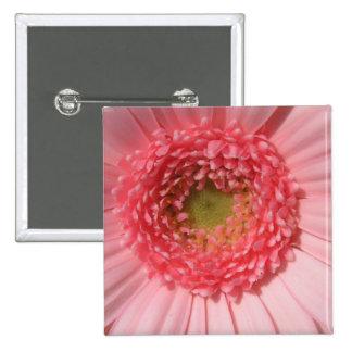 Pastel Pink Daisy  Pin