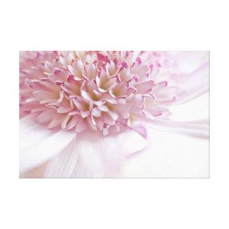 Pastel Pink Flower Canvas Print