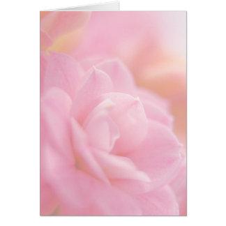 Pastel pink flower ... card