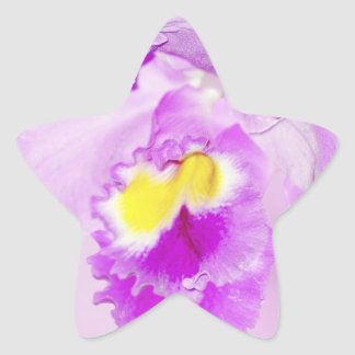 Pastel Pink Orchid Star Sticker