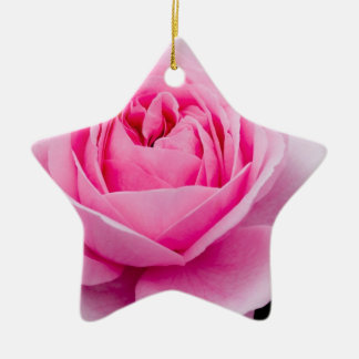 Pastel Pink Rose Ornament