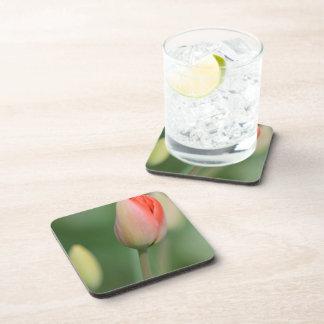 Pastel Pink Tulip Beverage Coasters