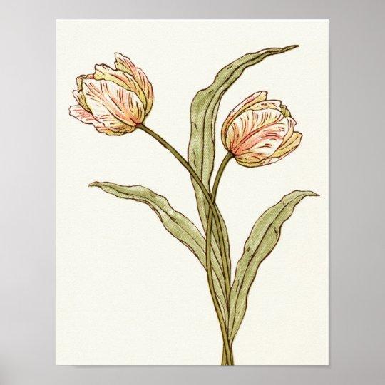 Pastel Pink Tulips Print