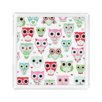 pastel powder color owl background acrylic tray