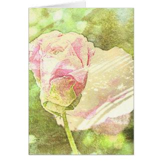 Pastel Rose Card