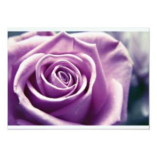 Pastel Rose Invitation (muted lilac)