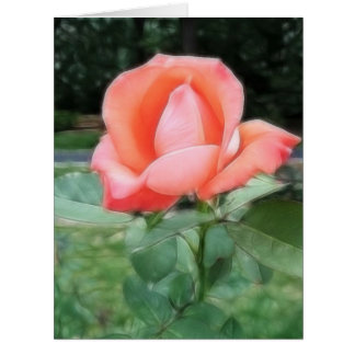 Pastel Rose jpg Card