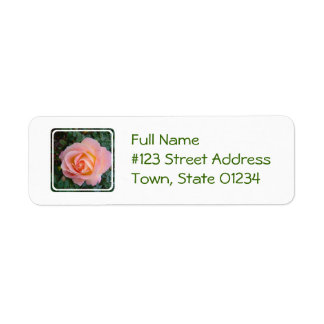 Pastel Rose Return Address Label