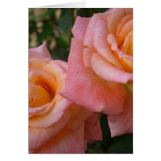 Pastel Roses  Greeting Cards