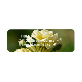 Pastel Yellow Rose Bush Return Address Label