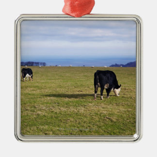 Pastoral scene of cows in field overlooking Silver-Colored square decoration