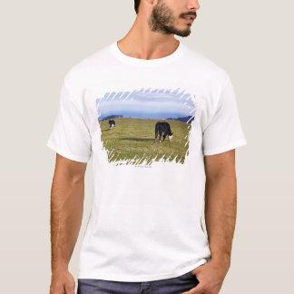 Pastoral scene of cows in field overlooking T-Shirt