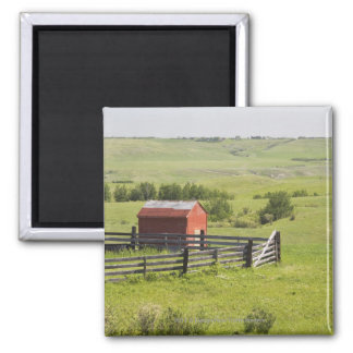 Pasture Fields With A Red Shack And A Fenced Area Square Magnet