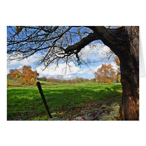 Pasture Scene Note Card